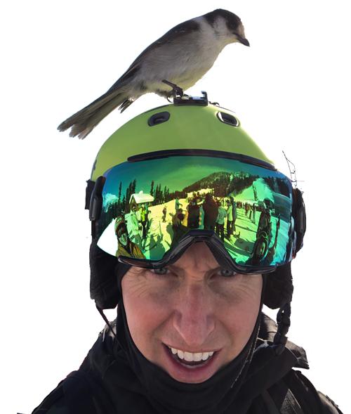 Matt Middlestetter snowboarding in Canada with bird on head